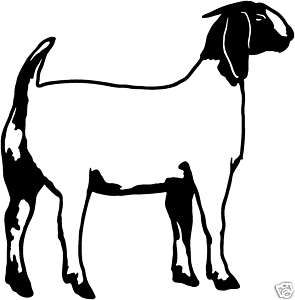 Boer Goat Silhouette   Clipart Panda   Free Clipart Images