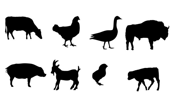 Farm Animal Silhouette   Clipart Best