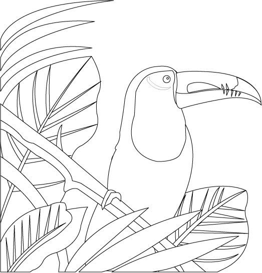 Rainforest Clipart Black And White Images   Pictures Becuo