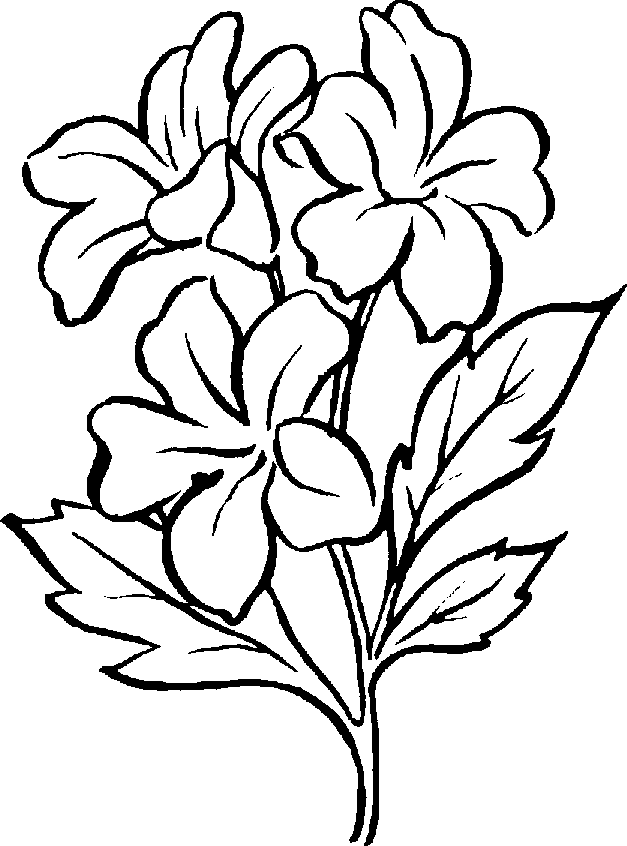 clipart roses black and white - photo #47