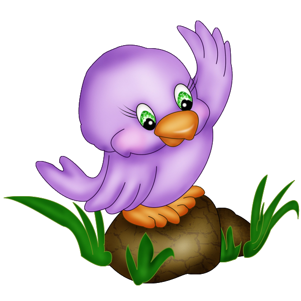 Cartoon Bird Images Of Tropical