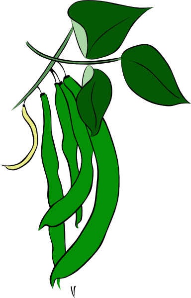 Green Beans Clip Art At Clker Com   Vector Clip Art Online Royalty