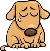 Dog Sad Face Clipart - Clipart Kid