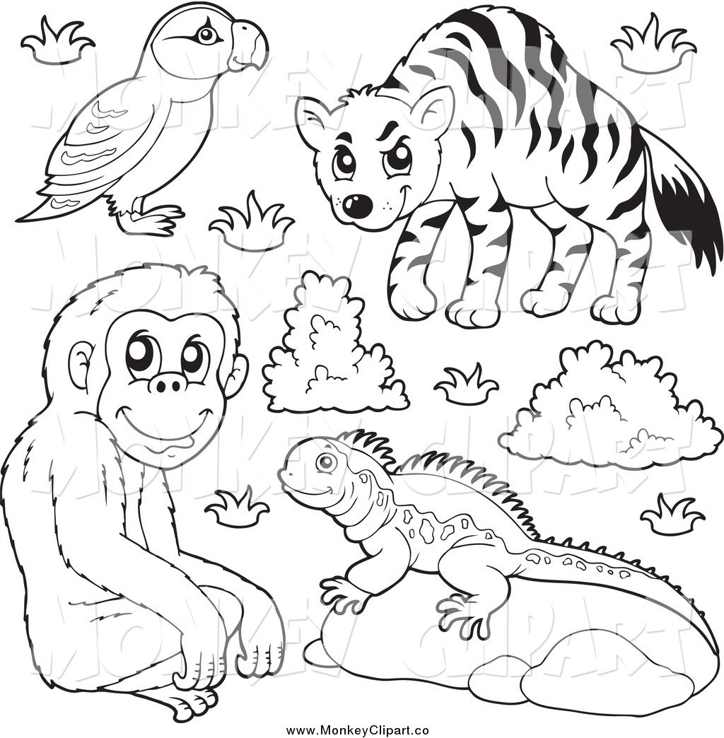 Clip Art Of A Black And White Puffin Monkey Lizard And Hyena Zoo