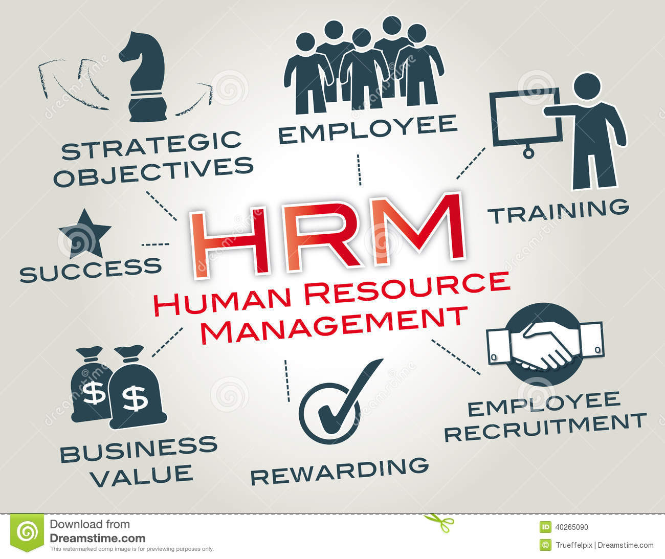 Human Resource Management Is A Function In Organizations Designed To