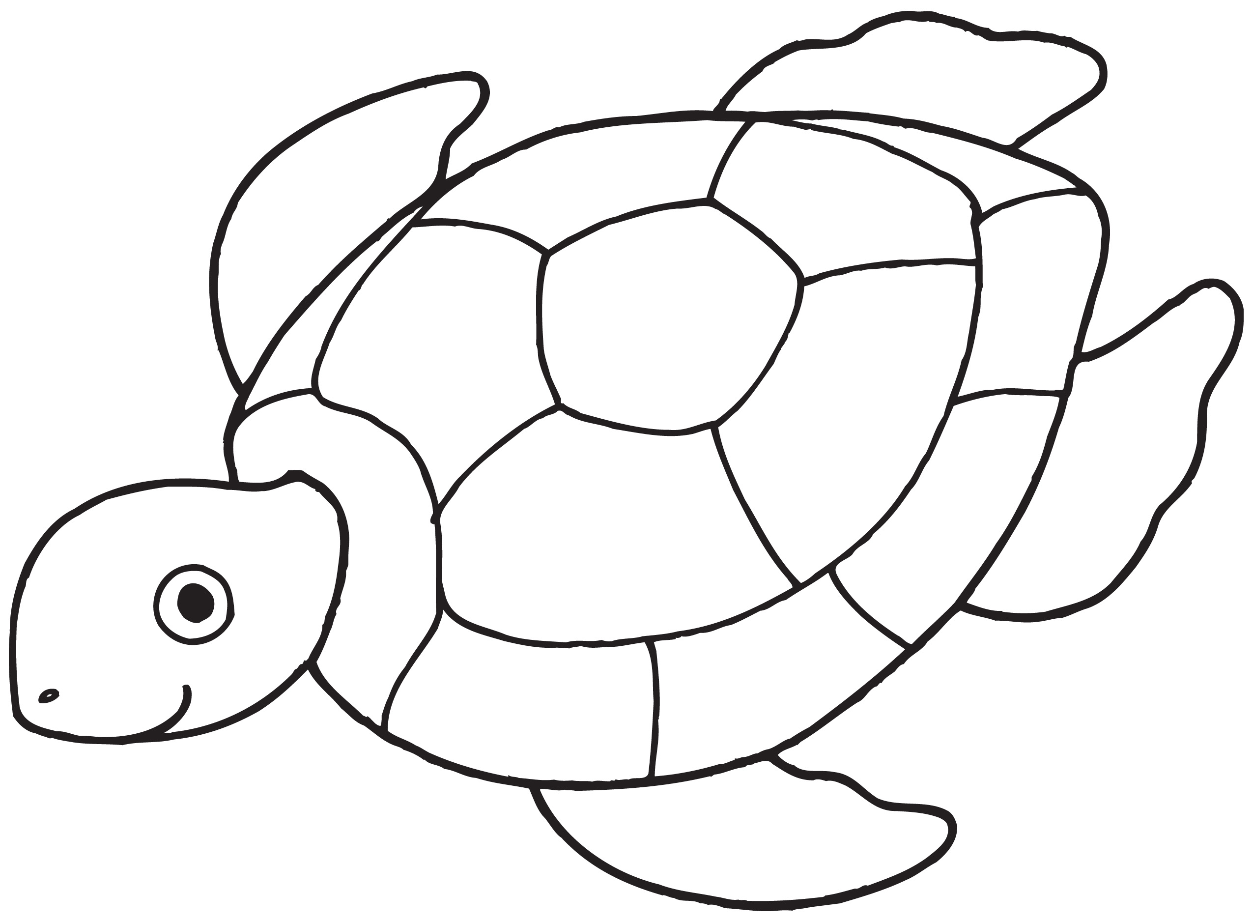 Turtle Outline Clipart - Clipart Kid