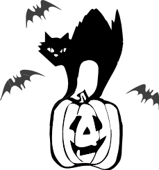 And White Black Cat Carved Pumpkin  Flying Bat Halloween Black Cat