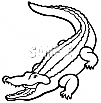 Animal Images Animal Clipart Net Clipart Of An Outline Of An Alligator