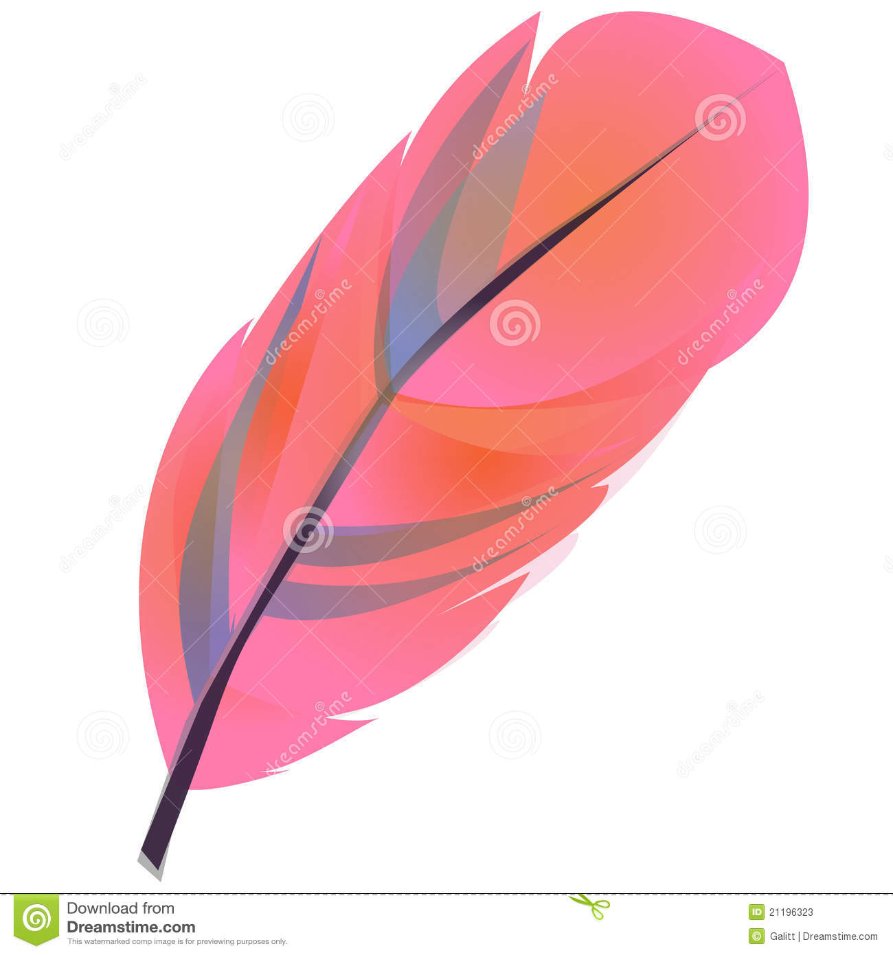 Feather Clipart Stock Photos   Image  21196323