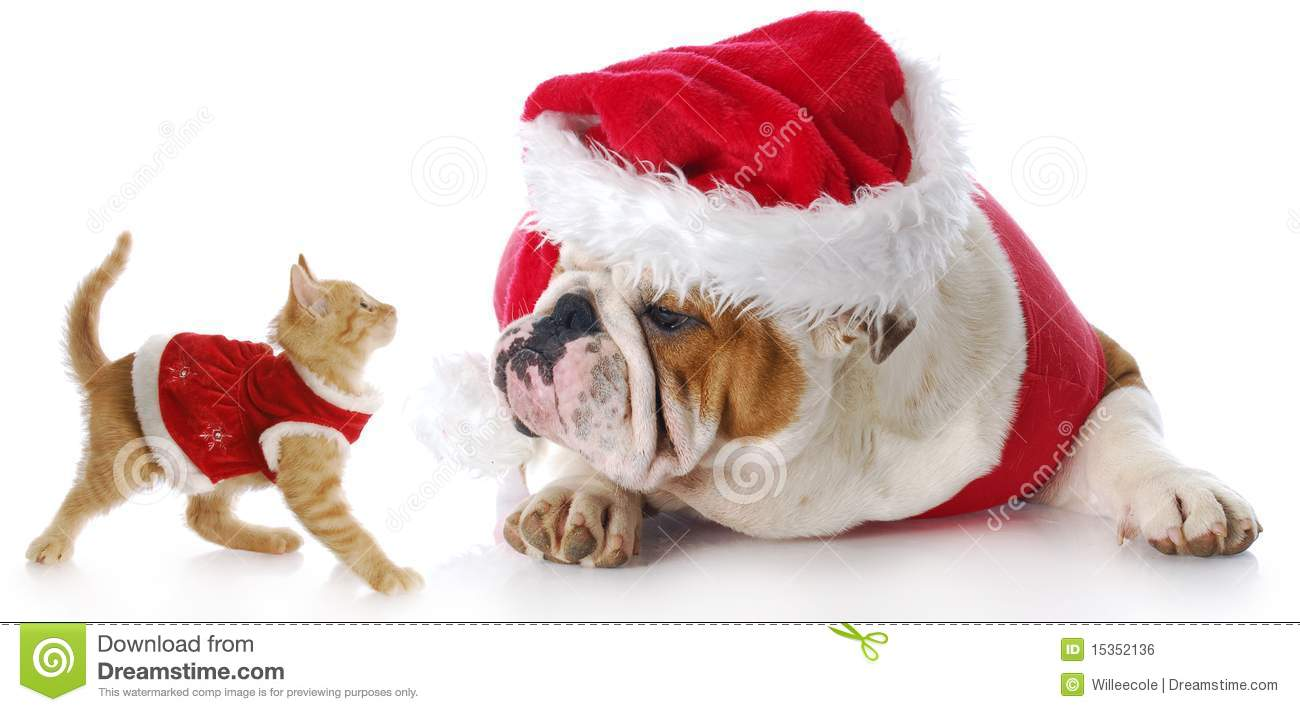Christmas Dogs And Cats Clipart