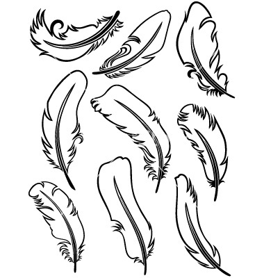 Feather Outline Clipart Feather Outline Template
