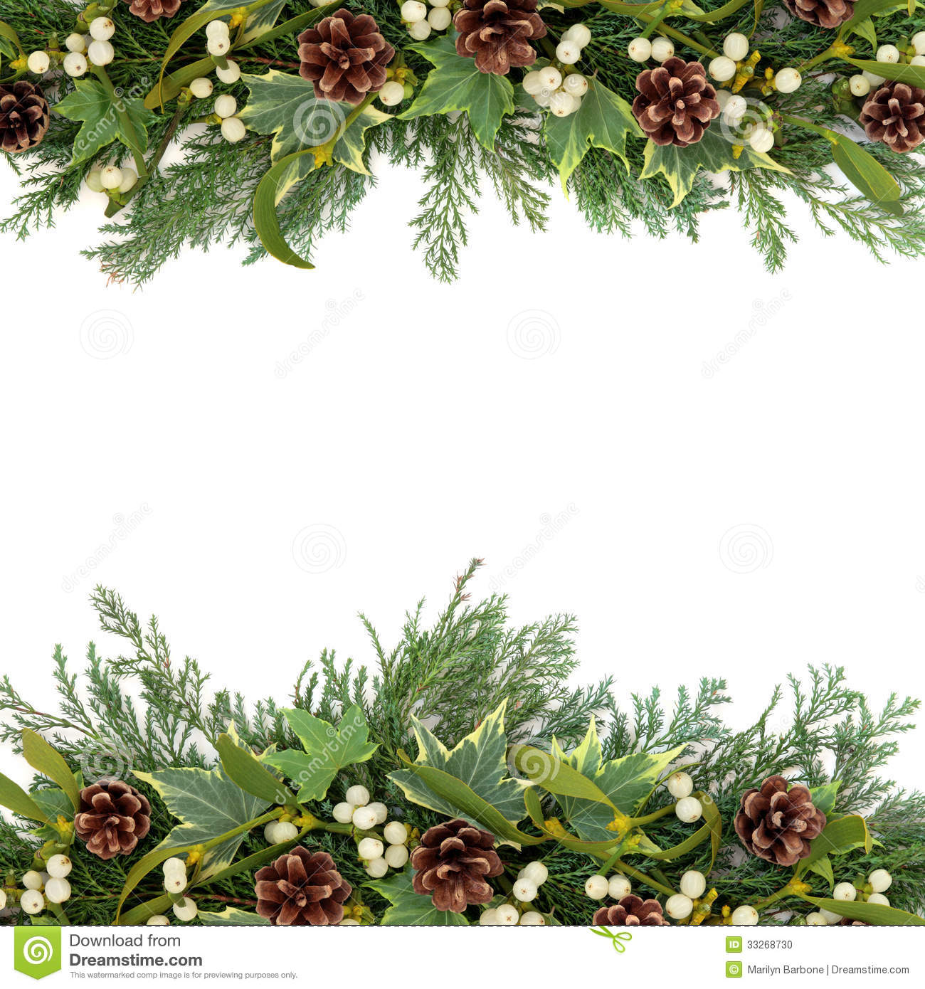 Christmas Floral Background Border With Mistletoe Ivy Pine Cones And