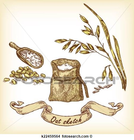Hand Drawn Illustration Of Oats And Grain View Large Clip Art Graphic