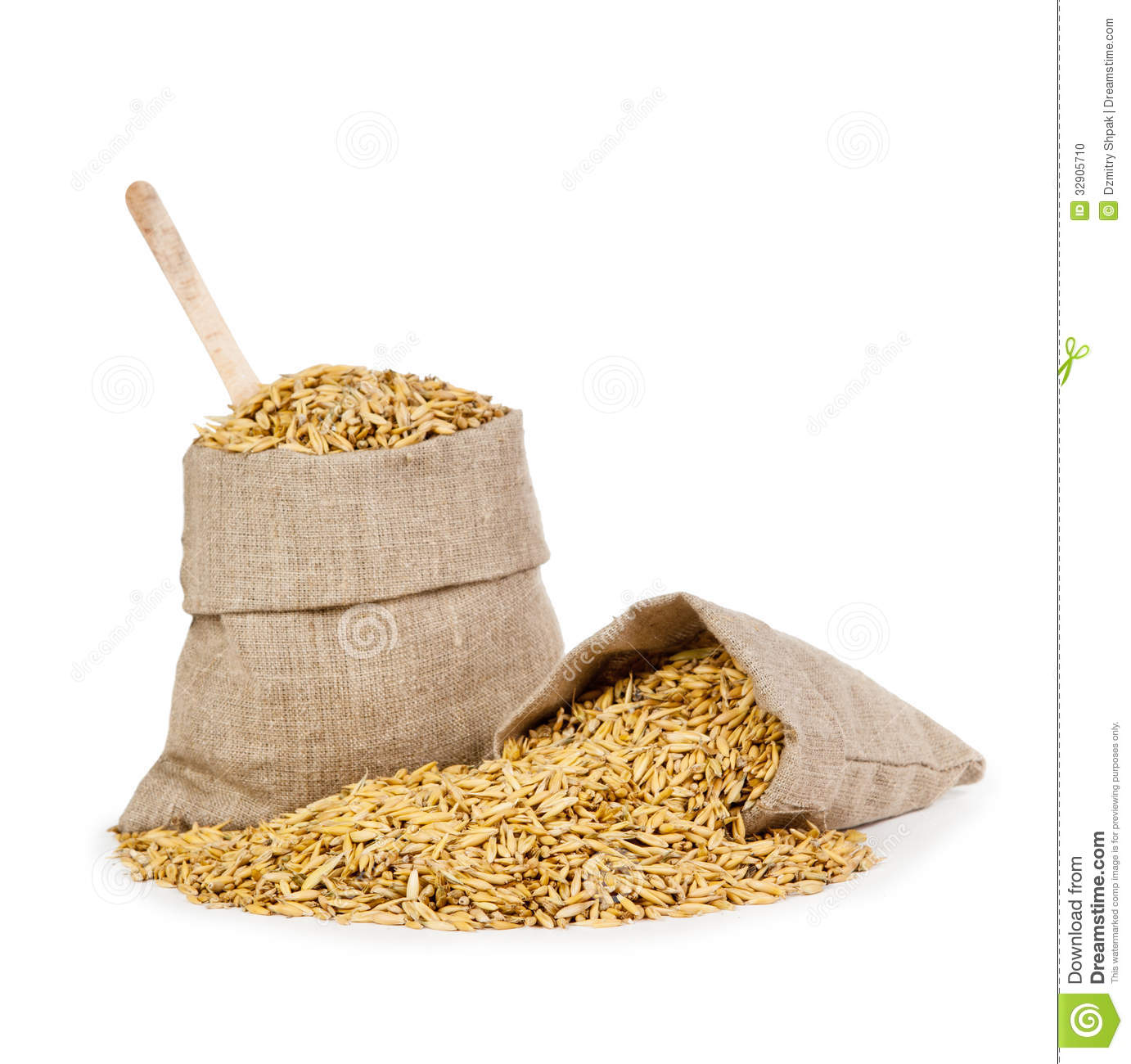 Oats In A Bag Isolated On White Background Stock Photo   Image