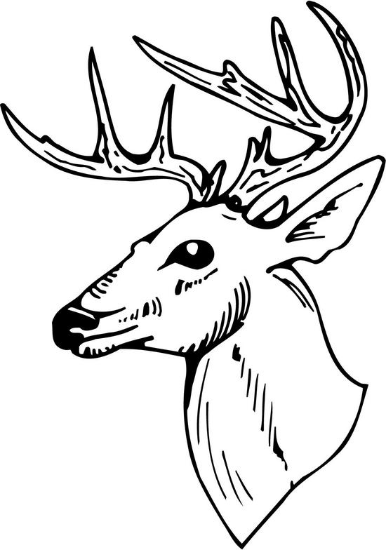 Deer Head Clipart Black And White   Clipart Panda   Free Clipart