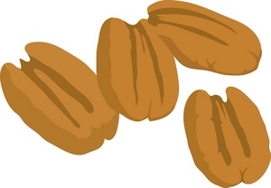 Clip Art Illustration Of A Bunch Of Pecan Nuts Clipart Illustration By