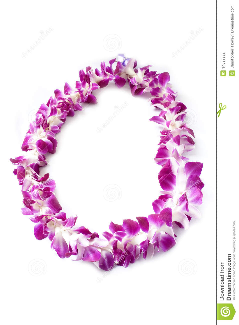 Orchid Hawaiian Lei Clip Art